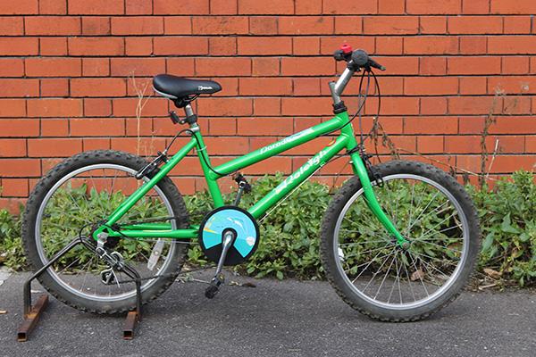 Girls-Bicycle-Raleigh-Paradise